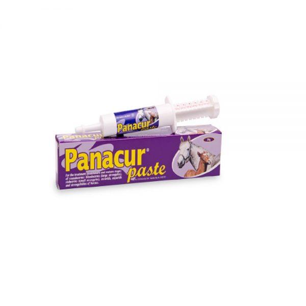 PANACUR® PASTE  horses